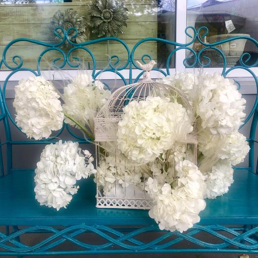 Роскошная срезанная гортензия в клетке: букеты цветов на заказ Flowwow