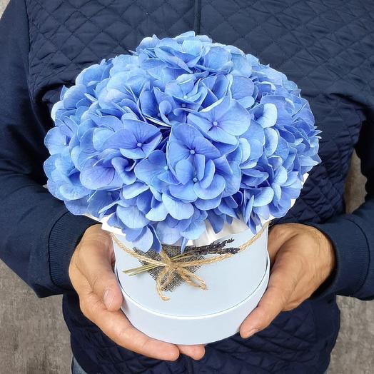 Роял блу: букеты цветов на заказ Flowwow