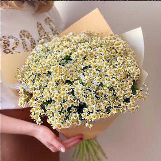 Ромашки в каждый дом: букеты цветов на заказ Flowwow