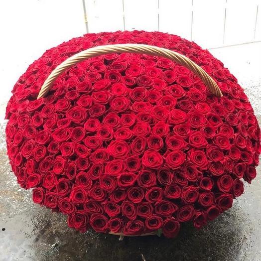 201 красная Роза 🌹