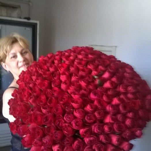 Букет эквадорских роз 90 см 201 роза: букеты цветов на заказ Flowwow