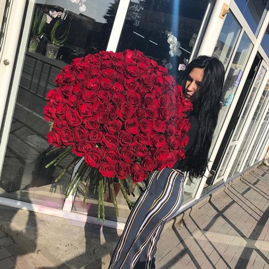 Голландские розы: букеты цветов на заказ Flowwow