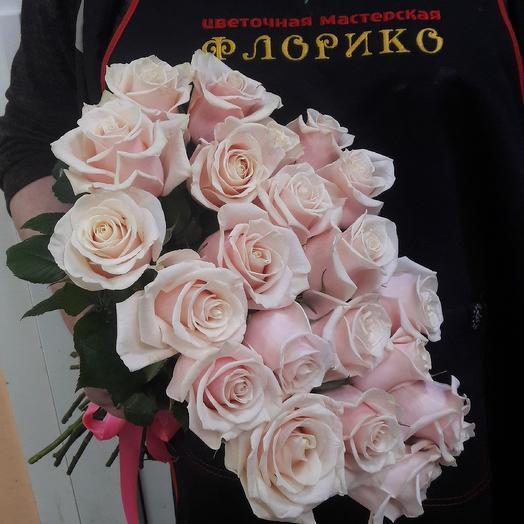 Чайная роза  25