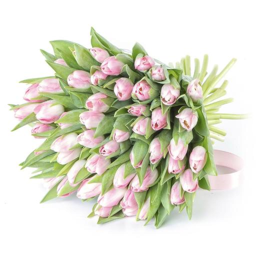 49 НЕЖНО-РОЗОВЫХ ТЮЛЬПАНОВ: букеты цветов на заказ Flowwow