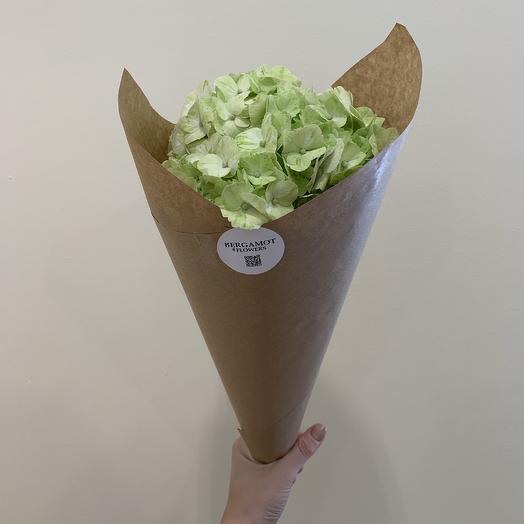 Лаймовый комплимент: букеты цветов на заказ Flowwow