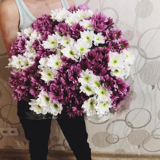 Хризантемы 51 шт: букеты цветов на заказ Flowwow