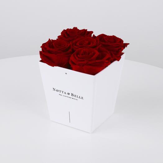 Долговечный букет из 5 роз (бордовый): букеты цветов на заказ Flowwow