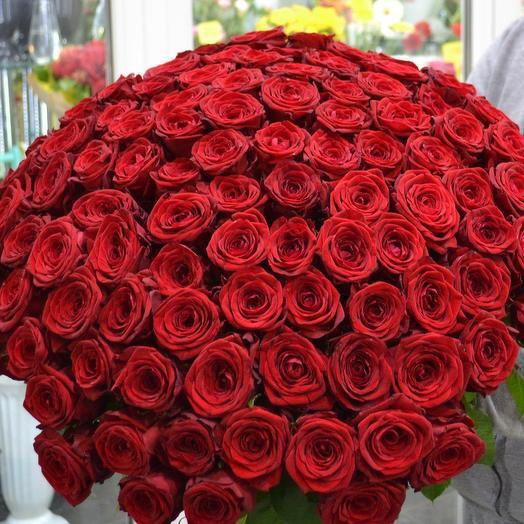 Красная роза 101: букеты цветов на заказ Flowwow