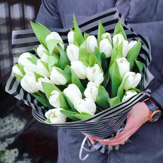 31 белоснежный тюльпан