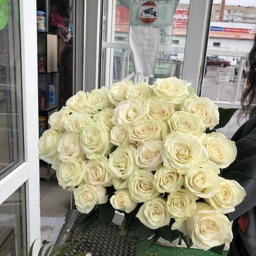 Роза 33