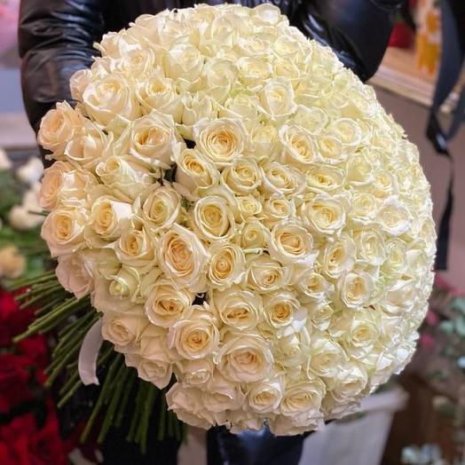 Букет из 161 белой розы