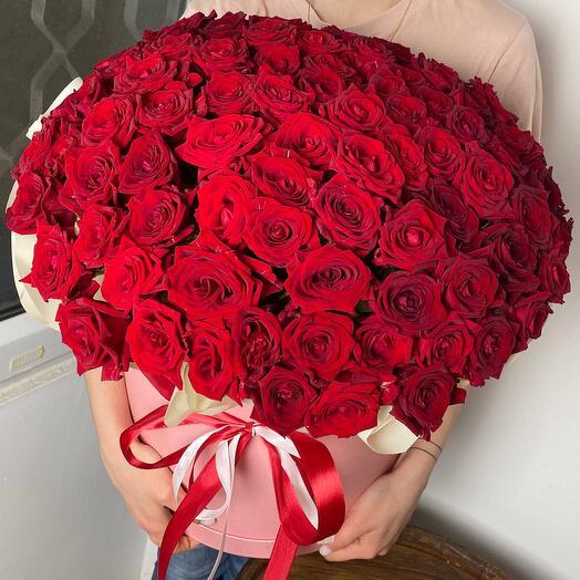 101 роза  XXL