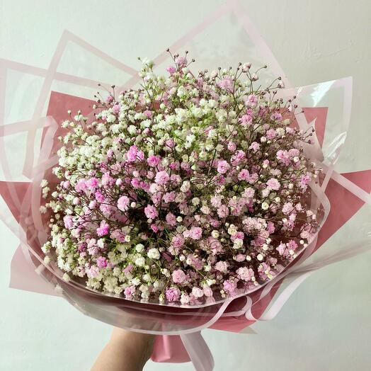 Розовая и белая гипсофила