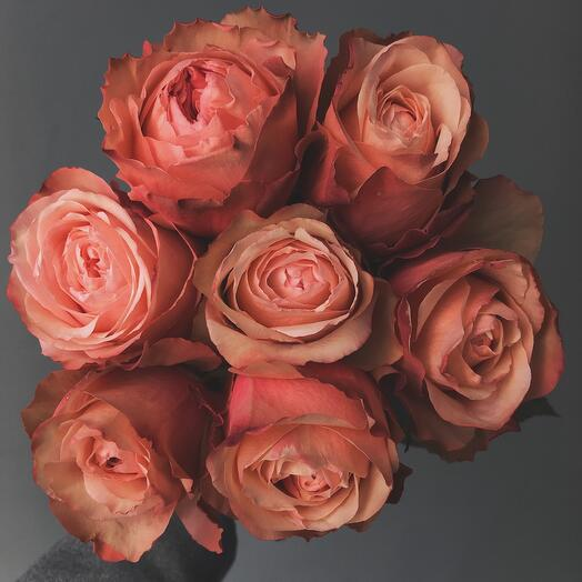 Моно из семи пионовидных роз