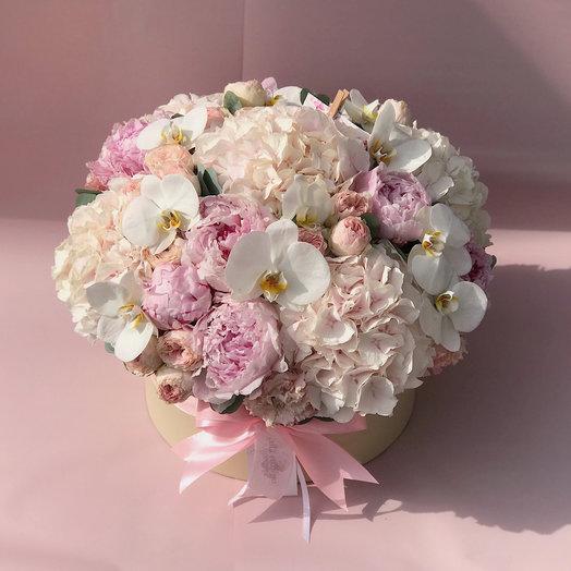 Шляпная коробка «Камелия»: букеты цветов на заказ Flowwow