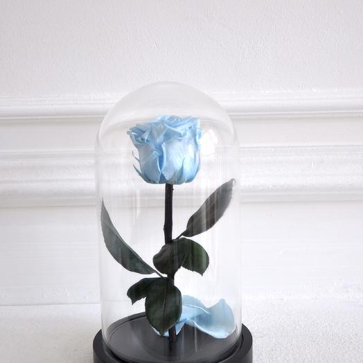 Роза в колбе мини Небесно-голубая
