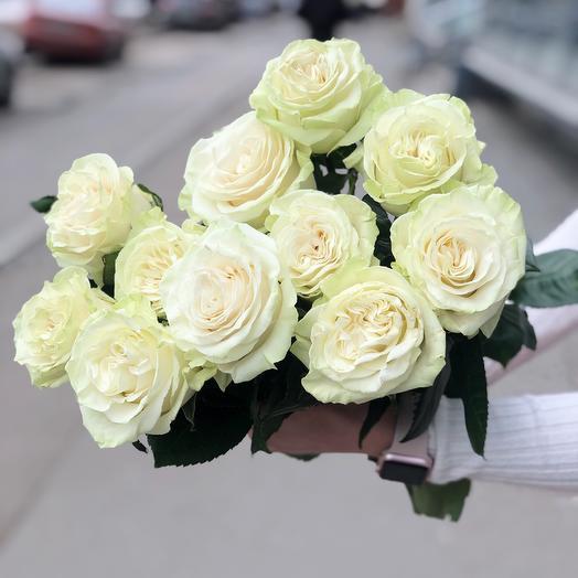 Роза Мондиаль премиум 11: букеты цветов на заказ Flowwow