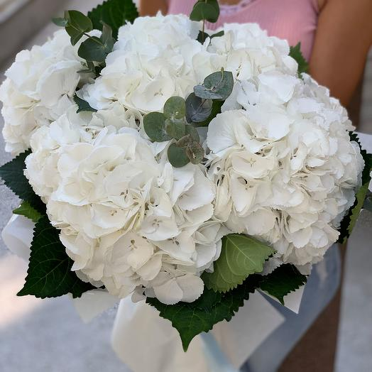Bouquet of white hydrangeas