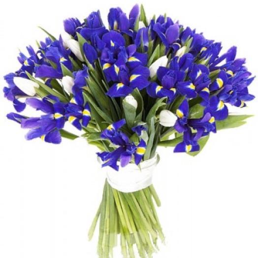 Букет салют: букеты цветов на заказ Flowwow