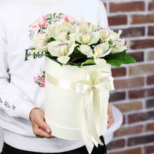 Коробки с цветами. Орхидея. Цимбидиум.  N381