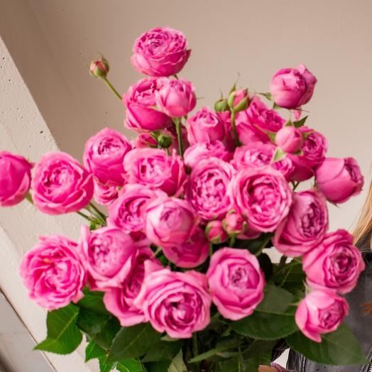 Розы Mistic