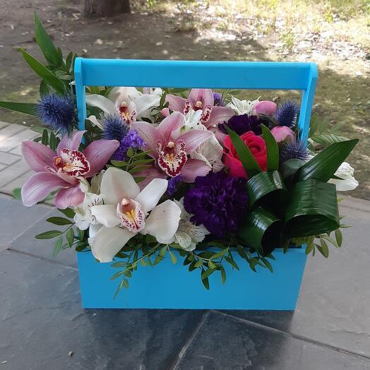 Ящик с орхидеями и поинами