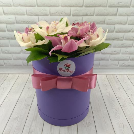 Орхидея микс: букеты цветов на заказ Flowwow