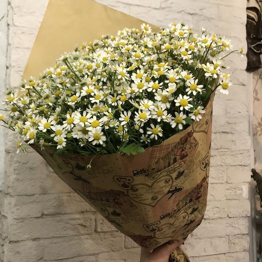 Настоящие ромашки для любимой: букеты цветов на заказ Flowwow
