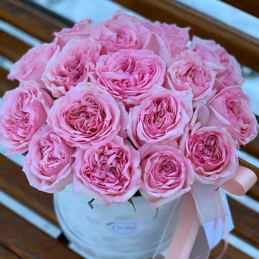 Pink O Hara: букеты цветов на заказ Flowwow