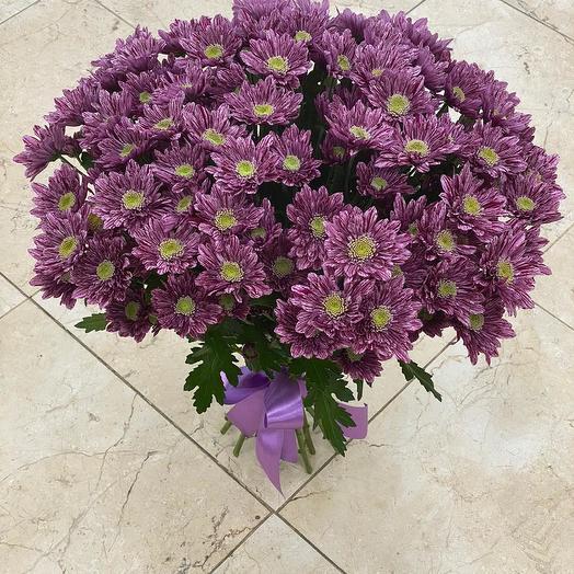 Букет из 15 фиолетовых хризантем кустовых: букеты цветов на заказ Flowwow