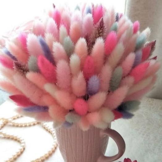Композиция в чашке сухоцветы: букеты цветов на заказ Flowwow