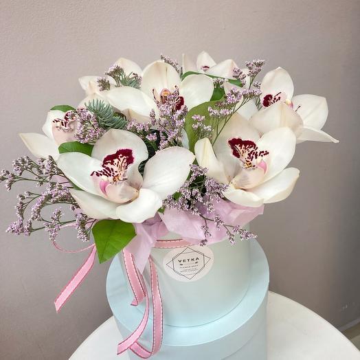 7 орхидей с зеленью