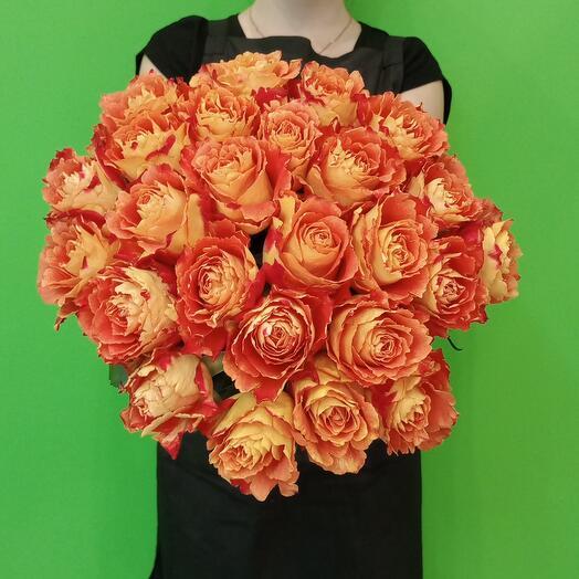 Роза Оранж Кения 25 шт