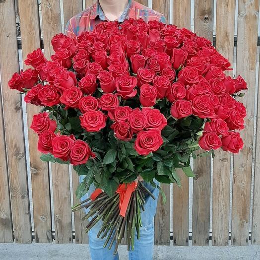 101 Голандская Роза 90 см