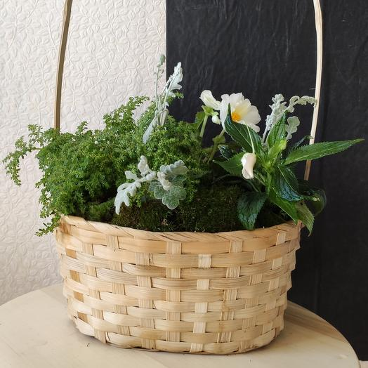 Корзина SWEET: букеты цветов на заказ Flowwow