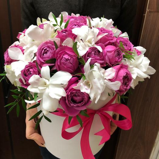 Коробочка Орхидеи с Мисти Баблс