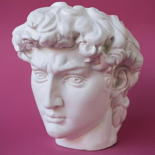 Кашпо голова Давида белое