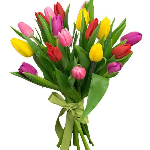 Тюльпаны 21 шт