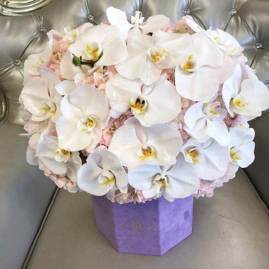Коробка с орхидеями и гортензиями: букеты цветов на заказ Flowwow
