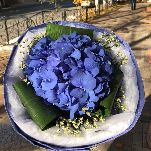 Синии гортензии: букеты цветов на заказ Flowwow