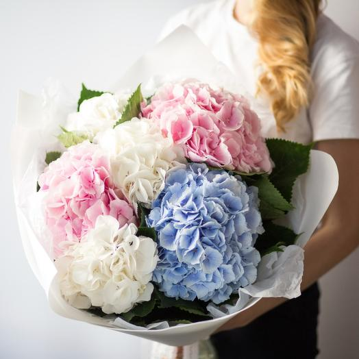 """Гортензия Микс 7"": букеты цветов на заказ Flowwow"