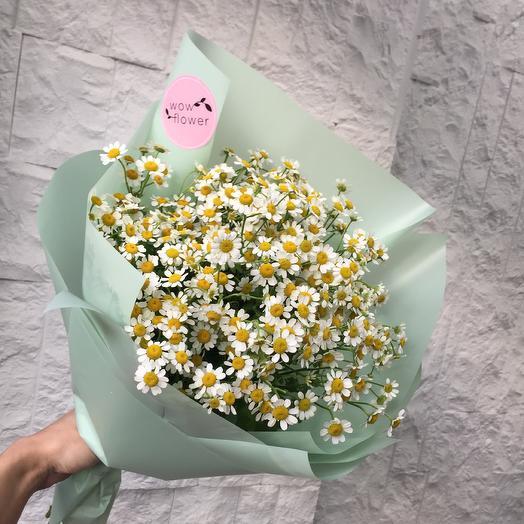Kamille mint: букеты цветов на заказ Flowwow