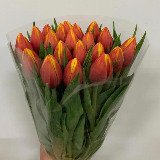 Оранжево-желтый тюльпан: букеты цветов на заказ Flowwow
