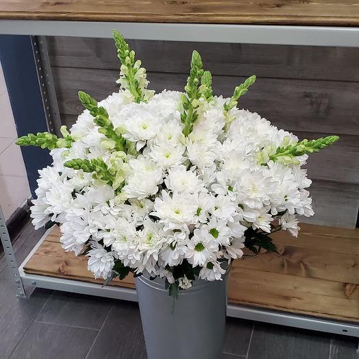 Кустовая хризантема с антиринумом