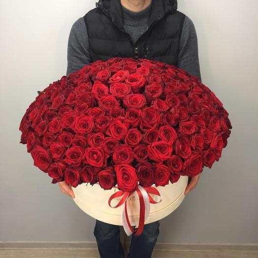 195 красных роз в бархатной коробке