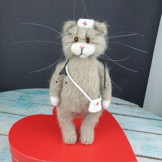 Кот доктор