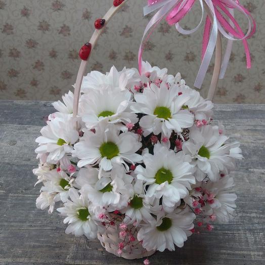 Хризантема в корзинке