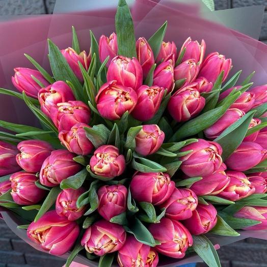 Тюльпаны 49шт