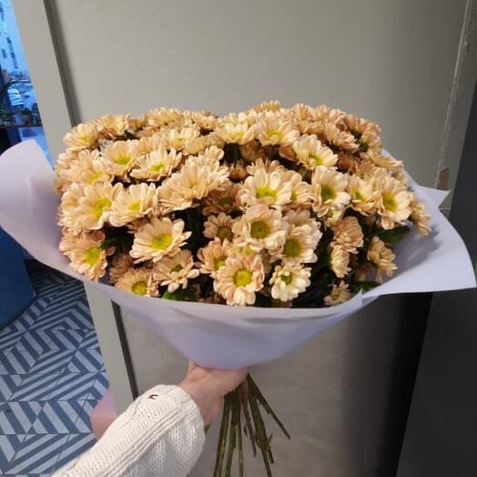 Монобукет из хризантемы кустовой