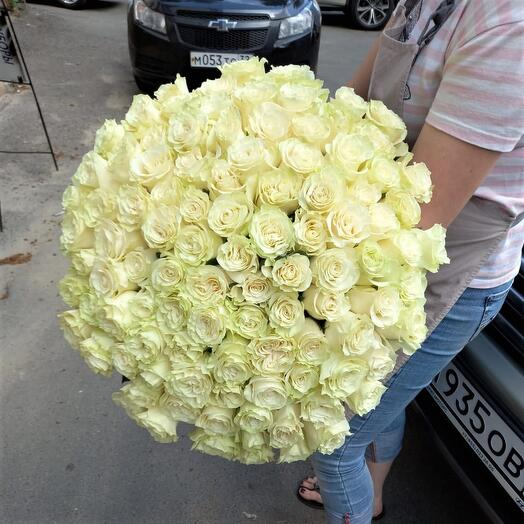101 роза мондиаль Эквадор